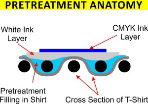 Pretreatment Anatomy Cross Section